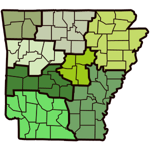 Arkansas Cannabis Lineup Set: Last 3 Dispensaries Pay Fees