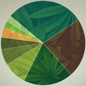 Pot Edibles Seen Claiming Market Share