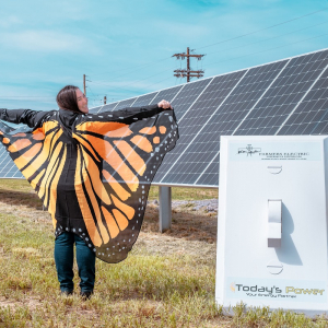 Farmers Electric Gets Its Day In the Sun With TPI-Built Array
