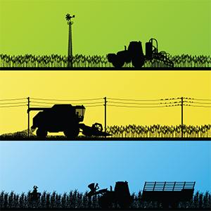 Arkansas Farmland Values Rise 5.1%