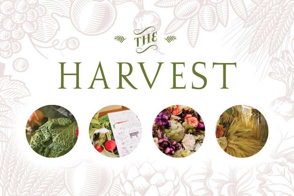 Bride FW20 Tablescapes Harvest 131772