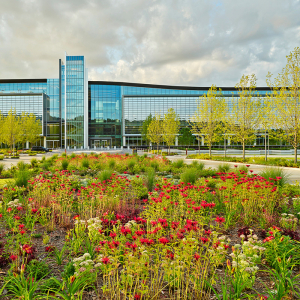 Art, Nature Bring Life to Bank OZK HQ