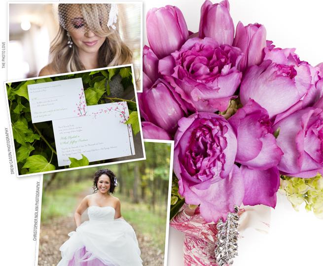 Cabbage Rose Florist