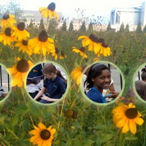 Five Natural Ways To Get Your Kids Into the Garden