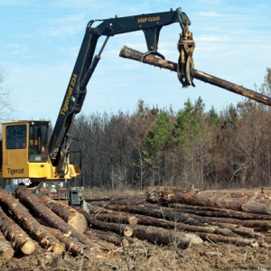 Turning Point for Timber as Demand Rises, Workforce Numbers Fall