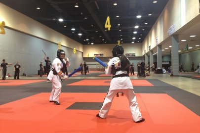 ATA World Expo Brings Taekwondo Competition and Training to Little Rock June 27-July 3