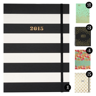Top 5 Planners to Get Your 2015 in Check