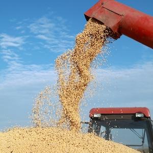 8 Farmers File Fraud Lawsuit Against Turner Grain