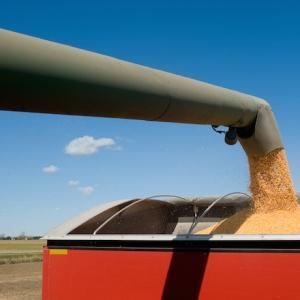 Agriculture Agencies Distributing Draft Grain Buyer Legislation