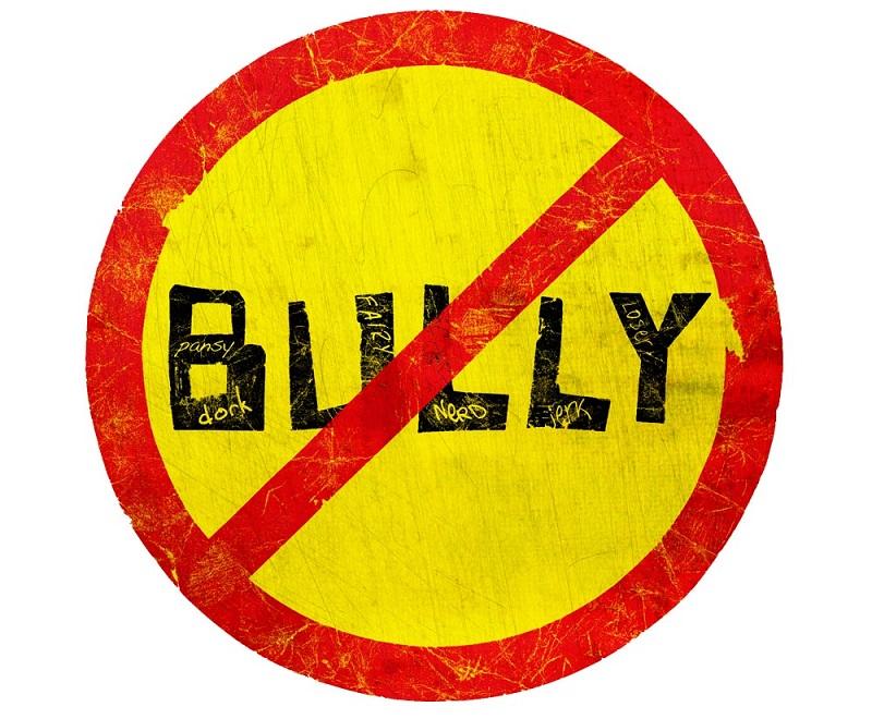 bullying in the national spotlight essay
