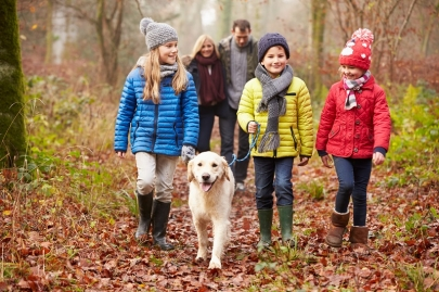 Active Families: 7 Family-Friendly Walks This Weekend