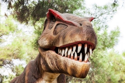 5 Events for Weekend Fun: Soup Sunday, Discover the Dinosaurs & More