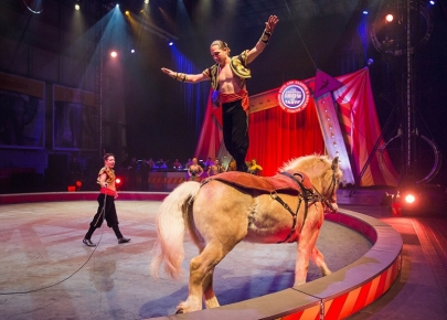 Tickets on Sale for Ringling Bros. and Barnum & Bailey Circus at Verizon Arena