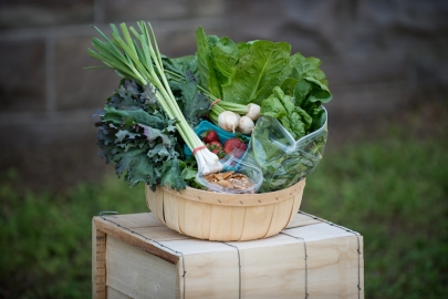 Fill Your Kitchen with Seasonal Produce from New South CSA Shares