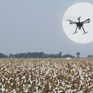 Drones: Farmers' Eyes Take To Arkansas Skies