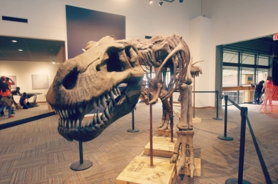 Mid-America Science Museum Offering $1500 Scholarship