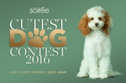 Vote Now! The Top 50 Cutest Dog Finalists Are Here