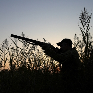 Top Duck Hunting Strategies for 2016