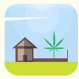 How to Score 100 on Marijuana Business Applications in Arkansas