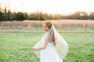 Arkansas Bride: Hannah Joy Spence