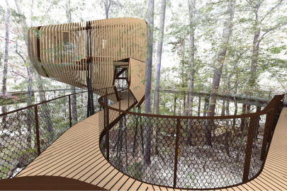 Construction Begins on 3-Story Treehouse at Garvan Gardens