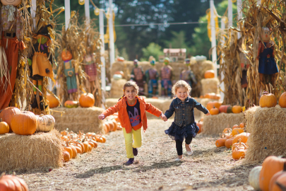 17 Pumpkin Patches in Central Arkansas to Visit this Fall