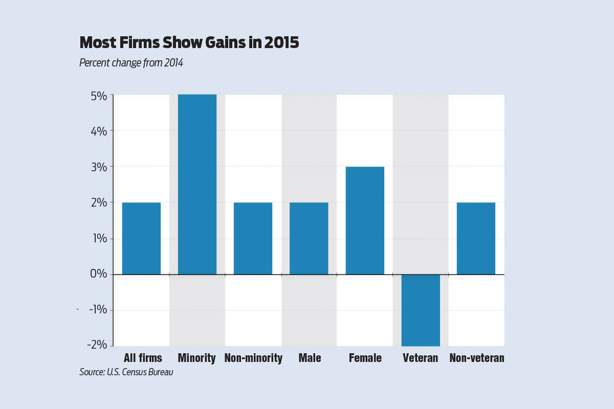 Minority-Owned Firms Experience Increase in '15