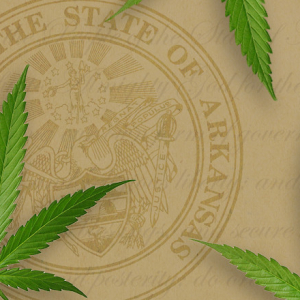 Arkansas Names 5 Companies Picked to Grow Medical Marijuana