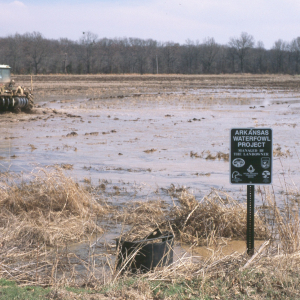 State Ducks Unlimited Chapters Among Nation's Top Fundraisers