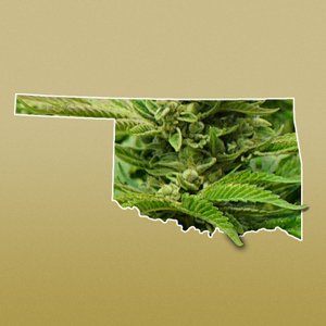 The Nuts and Bolts of Oklahoma's Marijuana Proposal (Erika Gee Commentary)