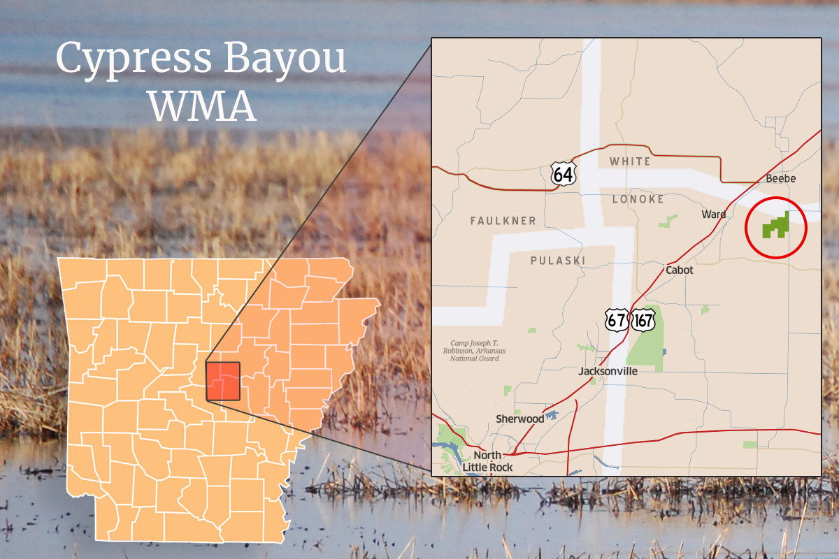 Cypress Bayou WMA Map